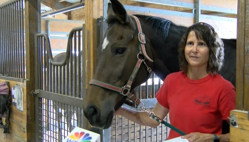 Кроссфит, благотворительность и лошади